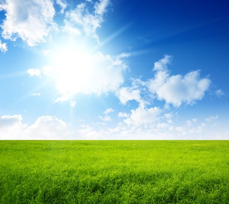 summer field of green grass and perfect blue sky Stock Photo - 5771309