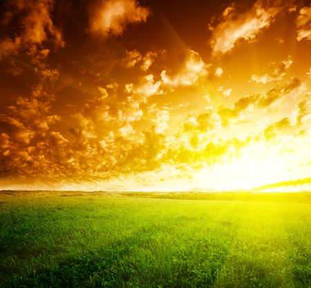 field of grass and sunset Stock Photo - 5801128