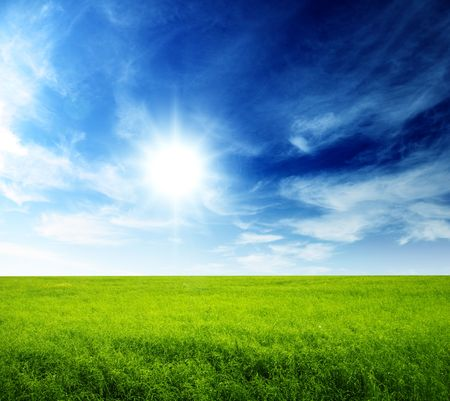 summer field of green grass and perfect blue sky Stock Photo - 5801104