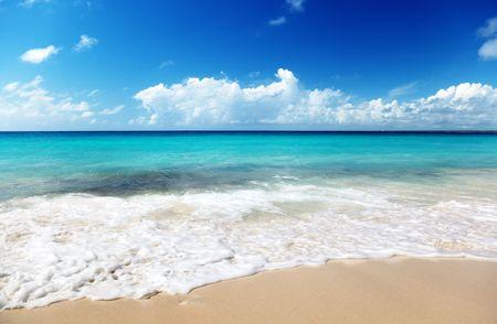 sand of beach caribbean sea Stock Photo - 5965475