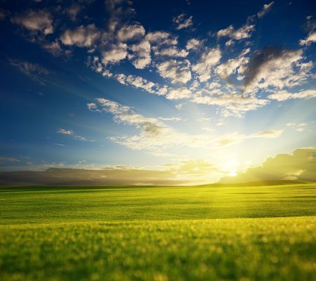 field of grass and sunset Stock Photo - 6008167