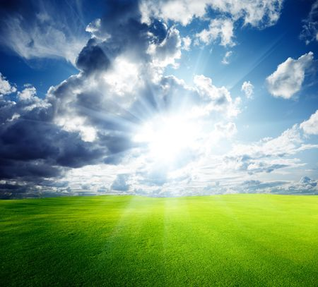 field of grass and perfect blue sky Stock Photo - 6105915
