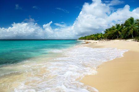 catalina: spiaggia di isola Catalina, Repubblica Dominicana  Archivio Fotografico