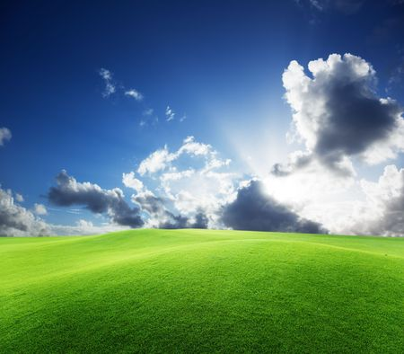 field of grass and perfect blue sky Stock Photo - 6190175