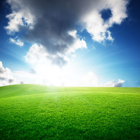 field of grass and perfect sky Stock Photo - 6190178