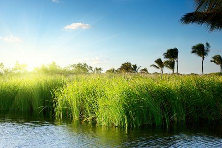 tropical lake in Dominican republic photo