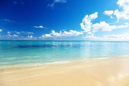 sand of beach caribbean sea Stock Photo - 6330639