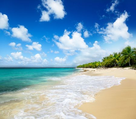 beach of Catalina island, Dominican republic photo