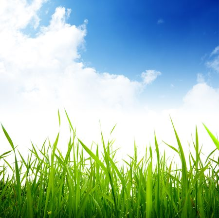 grass and cloudy sky Stock Photo - 6330678