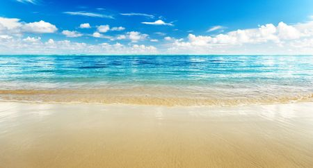 sand of beach caribbean sea Stock Photo - 6381548
