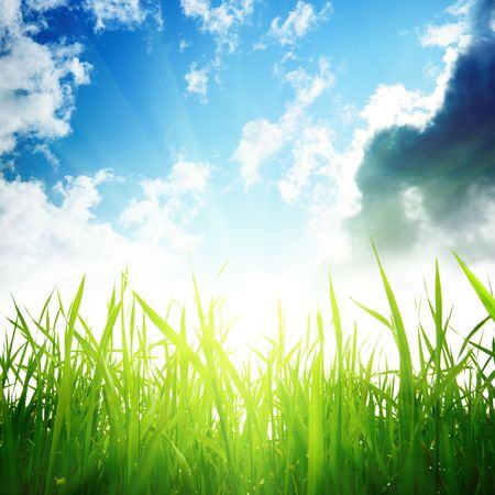 grass and cloudy sky Stock Photo - 6381549
