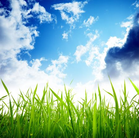 grass and cloudy sky Stock Photo - 6482342