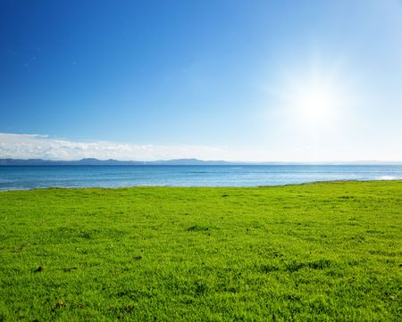 Caribbean sea and field of green grass photo