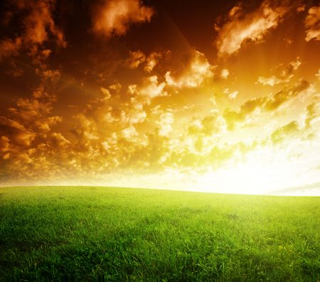 field of grass and sunset Stock Photo - 6545196