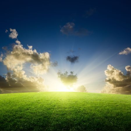 field of grass and sunset Stock Photo - 6545192