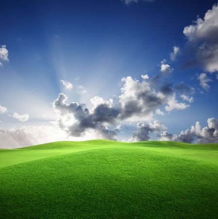field of grass and perfect sunset sky Stock Photo - 6545173