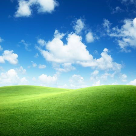 field of green grass and blue sky photo