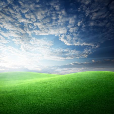 field of grass and sunset Stock Photo - 6545180