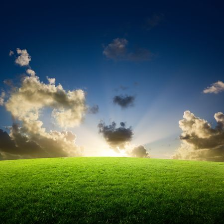 field of grass and sunset Stock Photo - 6545222