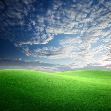 field of grass and sunset Stock Photo - 6545213