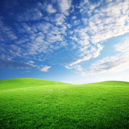 Feld von Gras und Sonnenuntergang
