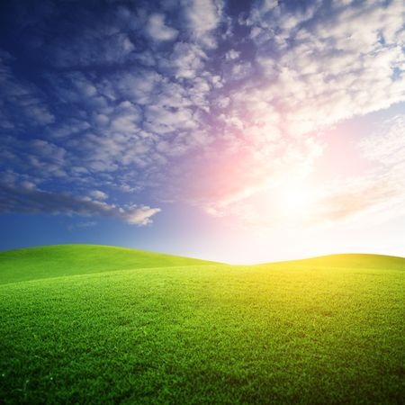 field of grass and sunset Stock Photo - 6648070