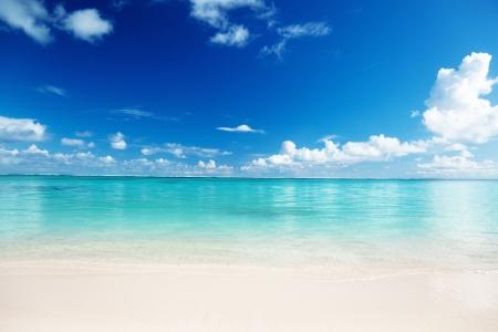 sand and Caribbean sea photo