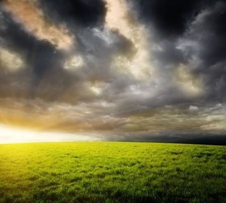 field of grass and sunset Stock Photo - 6689113