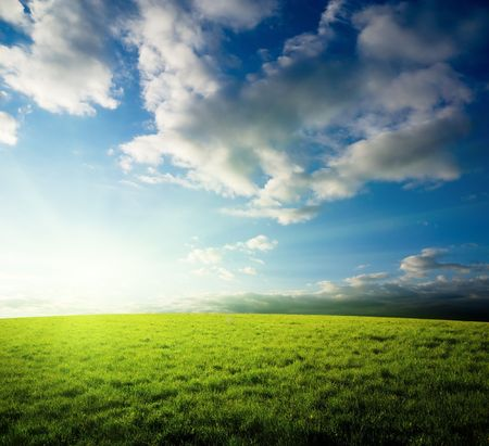 field of grass and sunset Stock Photo - 6689216
