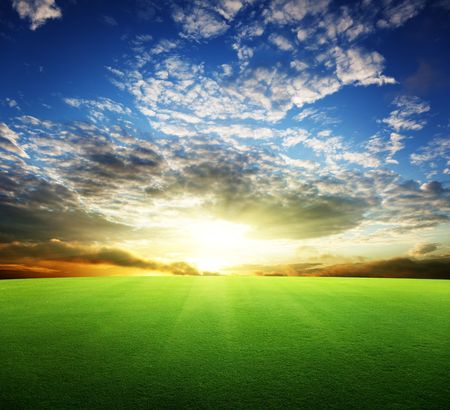 field of grass and perfect sunset sky Stock Photo - 6735421