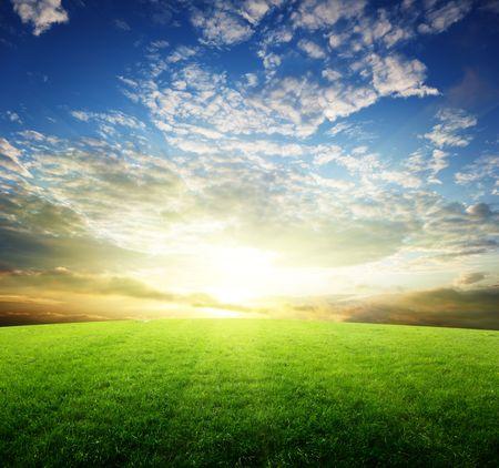 아침: 잔디와 일몰의 필드 스톡 사진