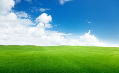 field of grass and perfect sky Stock Photo - 6738193
