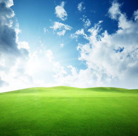 field of grass and perfect sky Stock Photo - 6777711