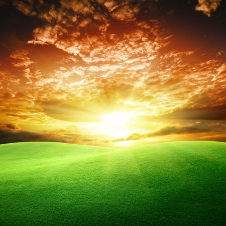 field of grass and sunset Stock Photo - 6777702