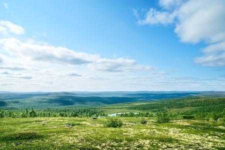 tundra: north mountain tundra