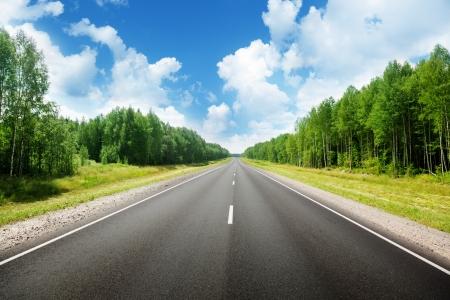 autopista: carretera en bosque ruso