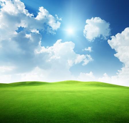 campi�a: campo de c�sped y cielo perfecto  Foto de archivo