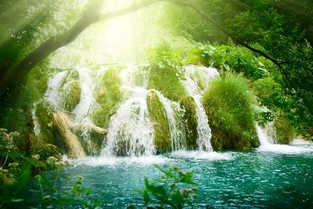 woods lake: cascata nel profonda della foresta