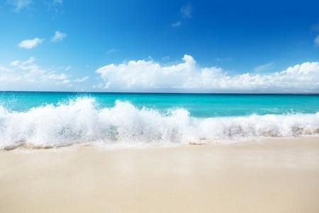 white sand beach: sand of beach caribbean sea