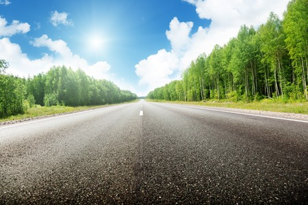 road in Russian forest Stock Photo - 8138452