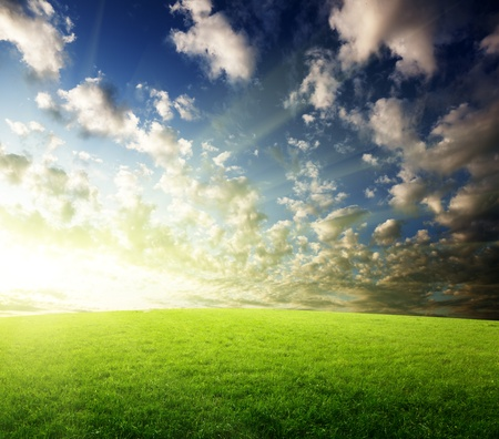 field of grass and sunset Stock Photo - 8347193