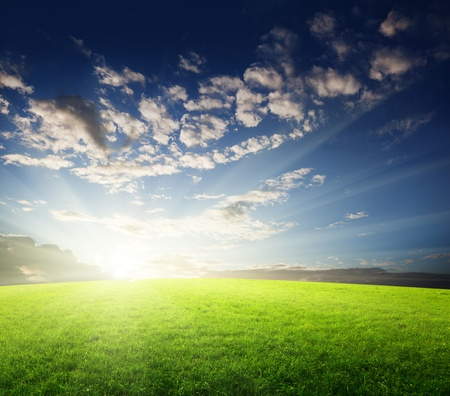 field of grass and sunset Stock Photo - 8347188