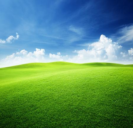 campo verde y el azul cielo