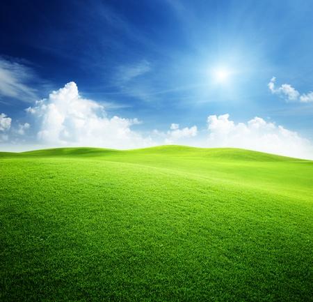 緑の草原、青い空