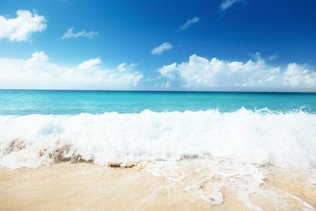 sand of beach caribbean sea Stock Photo - 8347168