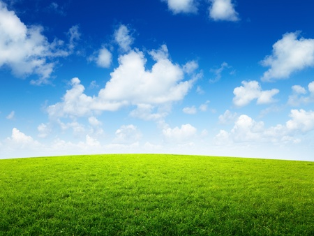 green field and sunny day Stock Photo - 8432057