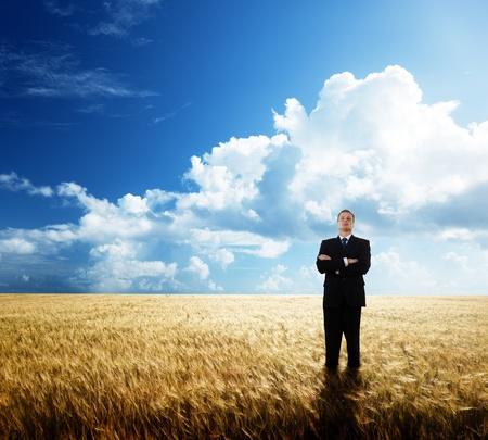 yellow  agriculture: joven empresario en el campo de trigo de yollow Foto de archivo