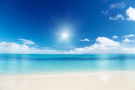 tropical beaches: sand of beach caribbean sea
