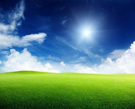 green field and sunny day Stock Photo - 8537772