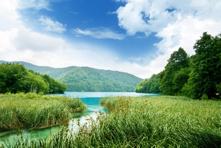 lake in deep forest photo